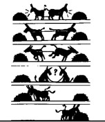 cooperar-es-mejor-que-competir